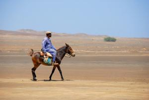 Marokko Rundreisen - Mulitour